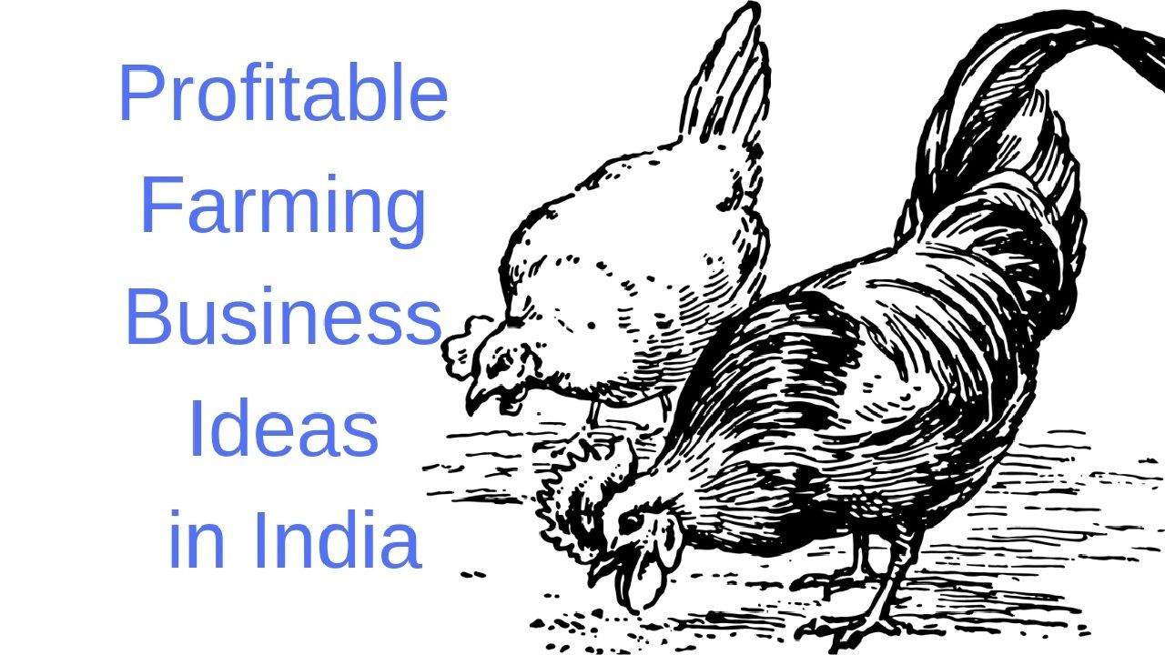 10 Profitable Farming Business Ideas in India for 2019
