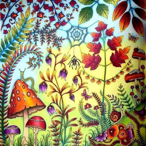 Wood Lights Coloring Books Imagination Red Pencil Flower Prismacolor Mushrooms Follow Me Forests