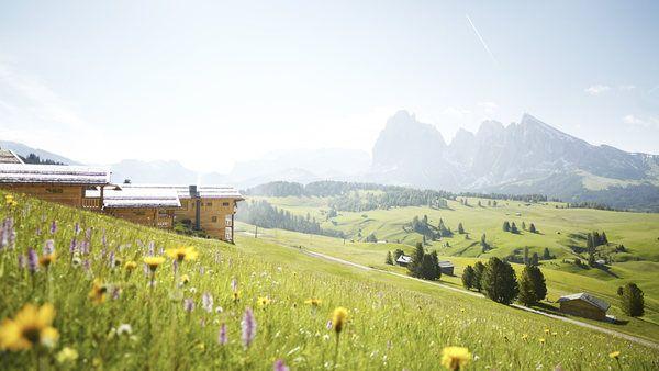 Alpe di Siusi - Adler lodge