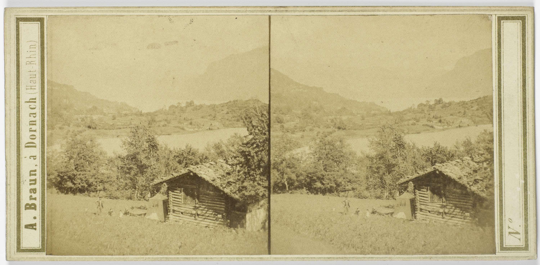 Adolphe Braun | Environs d'Interlaken. Vue du lac de Brienz, Adolphe Braun, 1850 - 1880 |