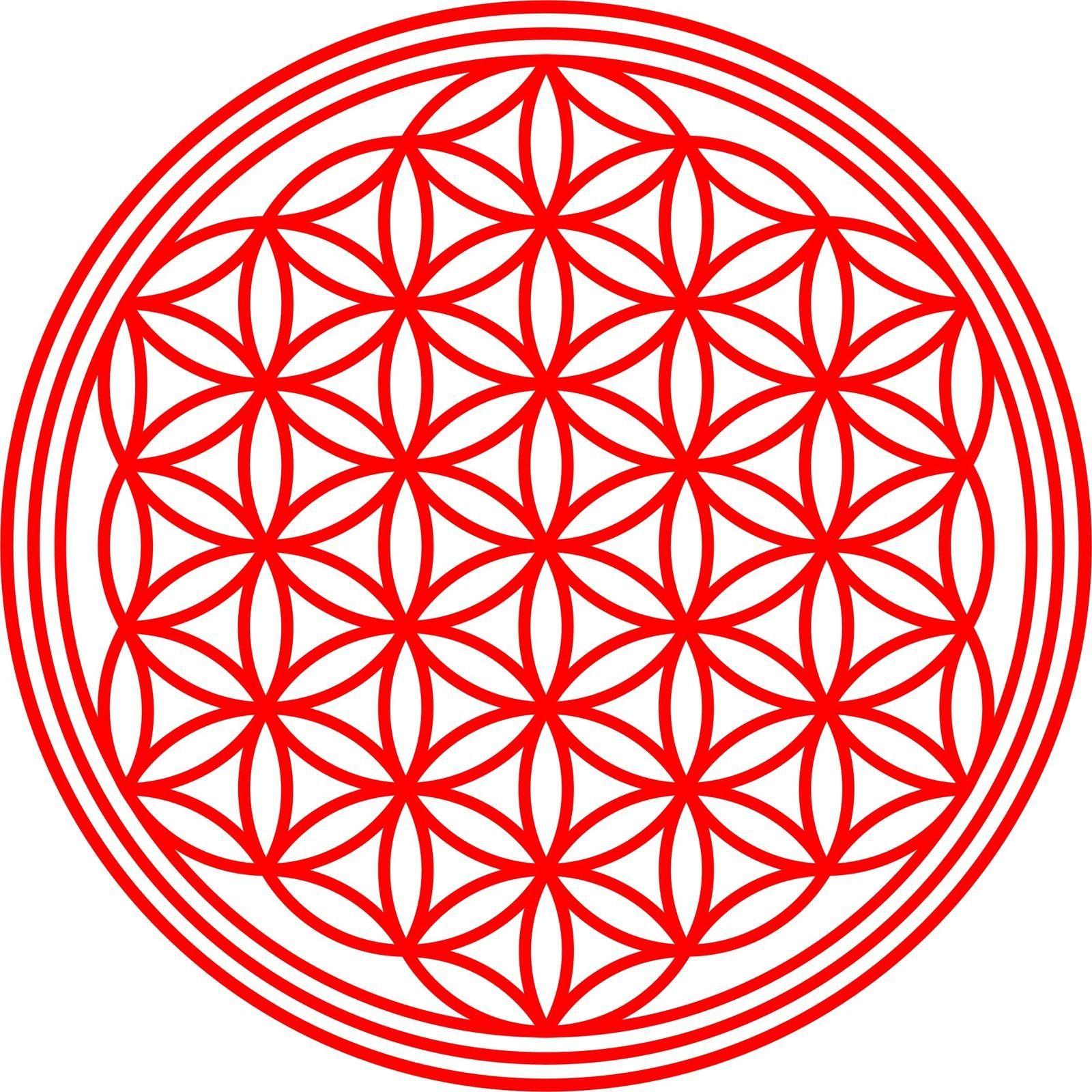 Simple Details zu Wandtattoo Aufkleber Blume des Lebens Mandala Heilige Geometrie Feng Shui