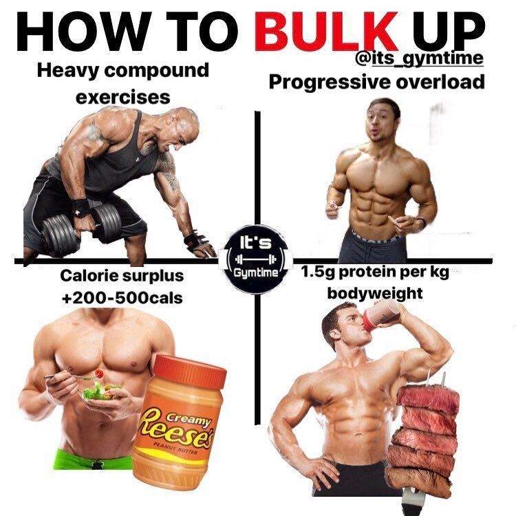 Best steroids for bulking fast organon model of language processing