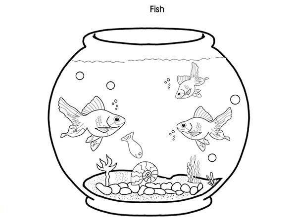 Coloring Pages Fish Tank. coloring page fish tank fish tank ...