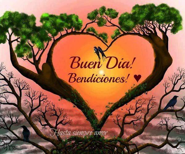 Maravillosas Imagenes Saludos Buenos Dias Imagenes De Puro Amor