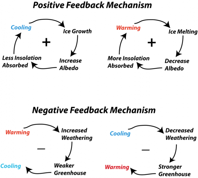 Schematic diagram representing some of the feedback