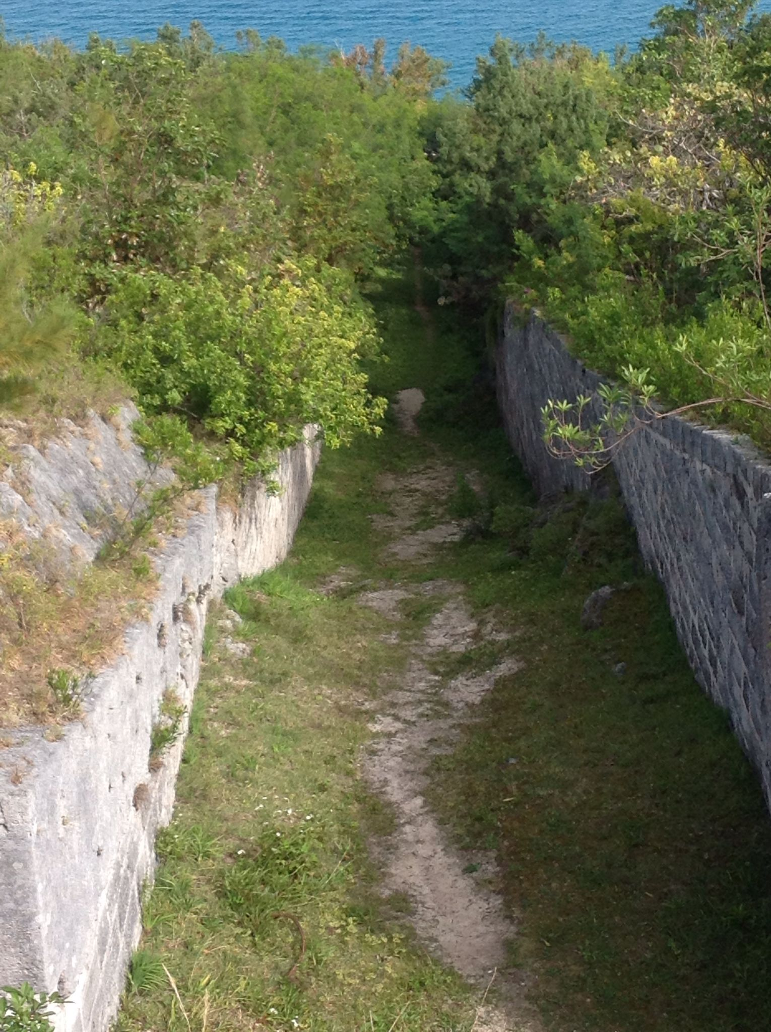 Mawellshaunonpintrest. Mote at Fort Scaur, Sandys, Bermuda