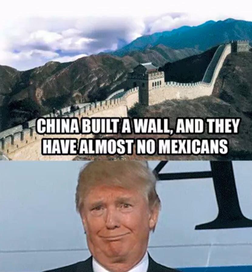 Funny Donald Trump Wall Memes : Funny trump wall meme stuff pinterest