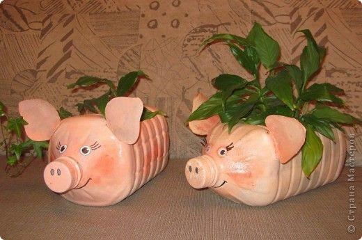 Piglets from plastic bottles.