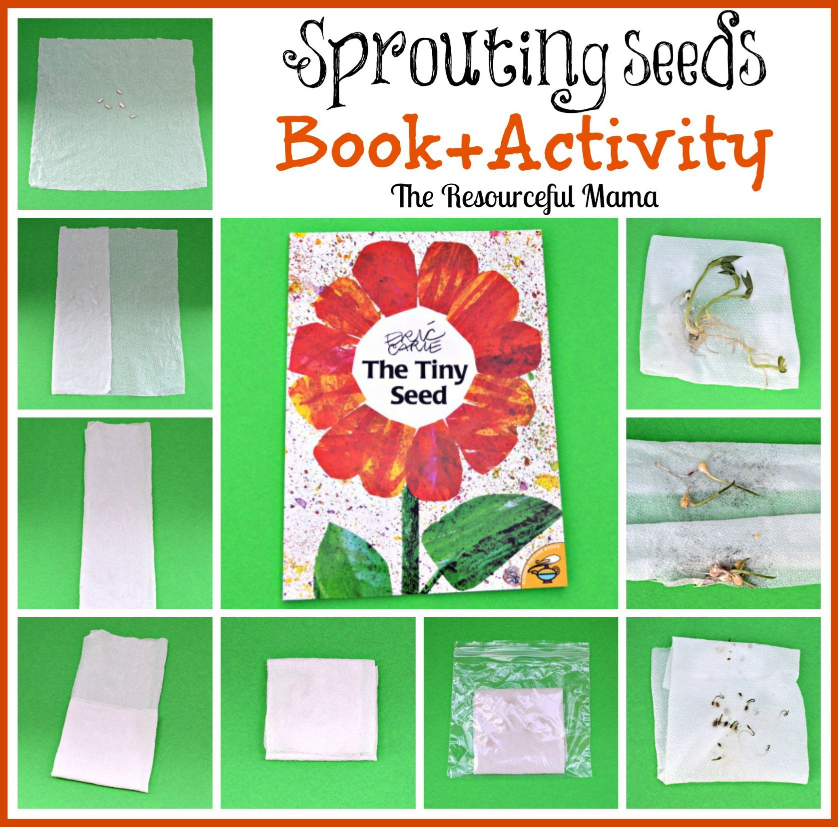 Book Craft The Resourceful Mama Seed Activities For Kids The Tiny Seed Tiny Seed Activities [ 1656 x 1677 Pixel ]