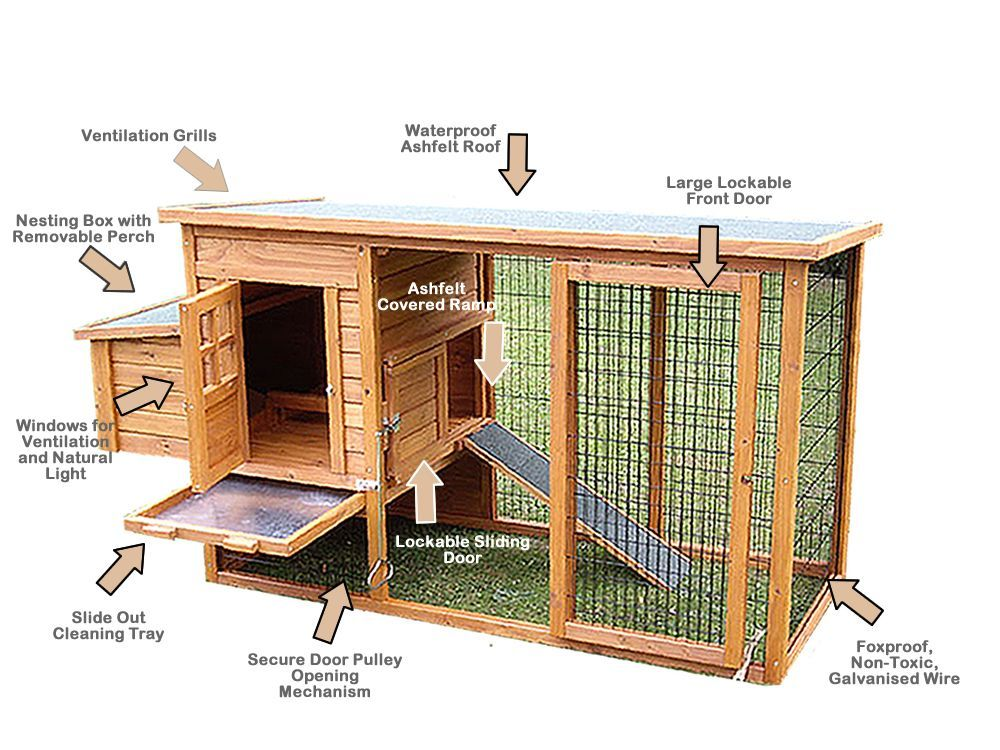 Learn how to build chicken coops or a hen house with easy for Poultry house plans for 100 chickens