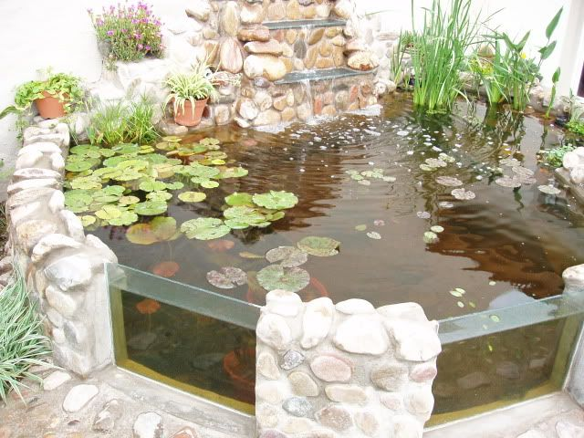 Imagen estanques pinterest estanques peceras y cascadas - Estanques para tortugas de agua ...