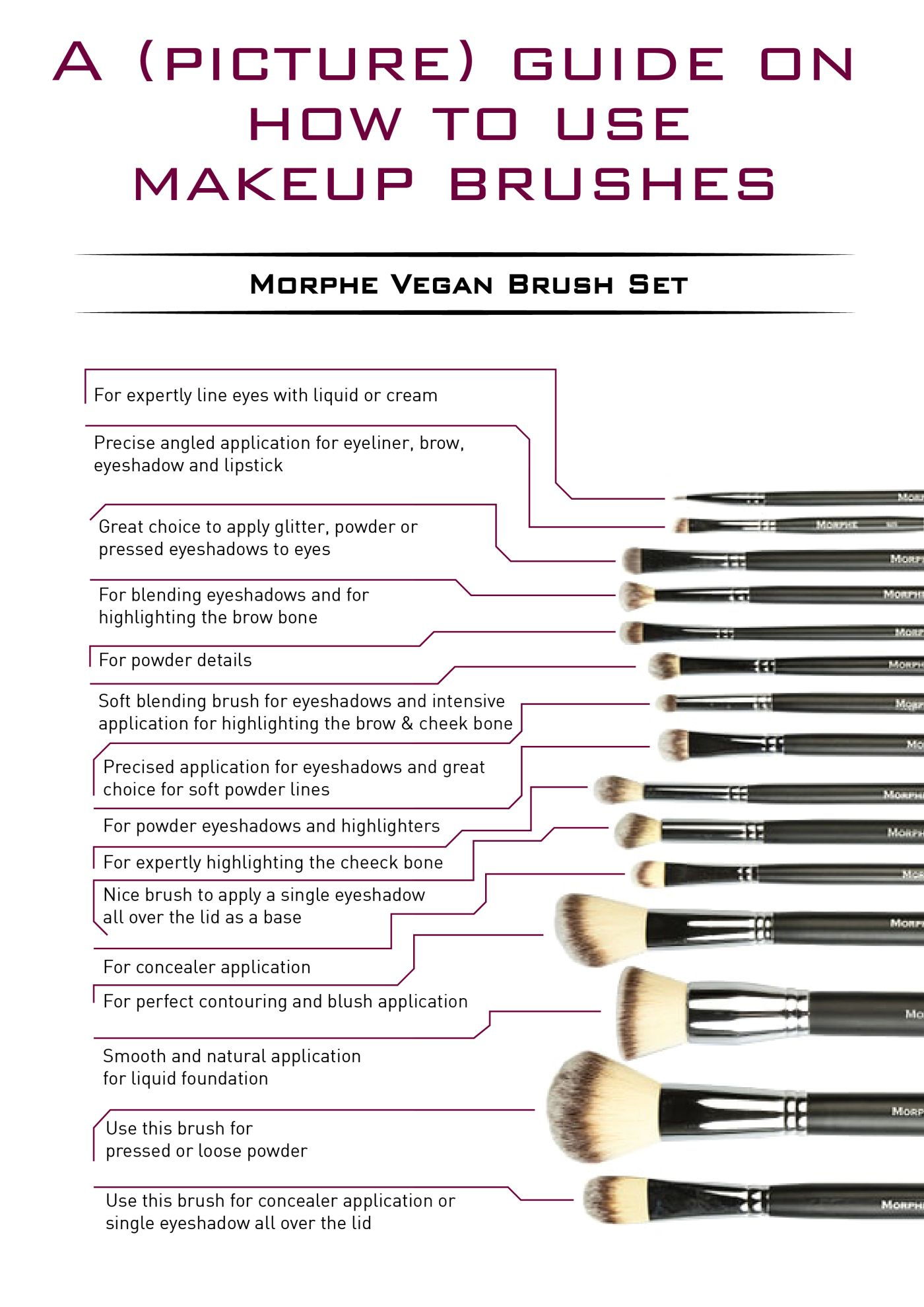 Photo of Ultimate Brush Guide