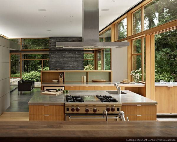 MidCentury modern home with a nature backdrop Modern house