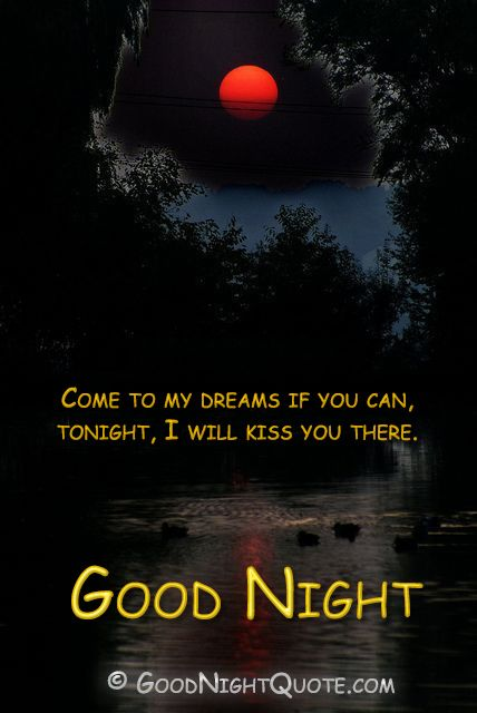 Good Night I Will Kiss You Good Night Quotes And Images Good
