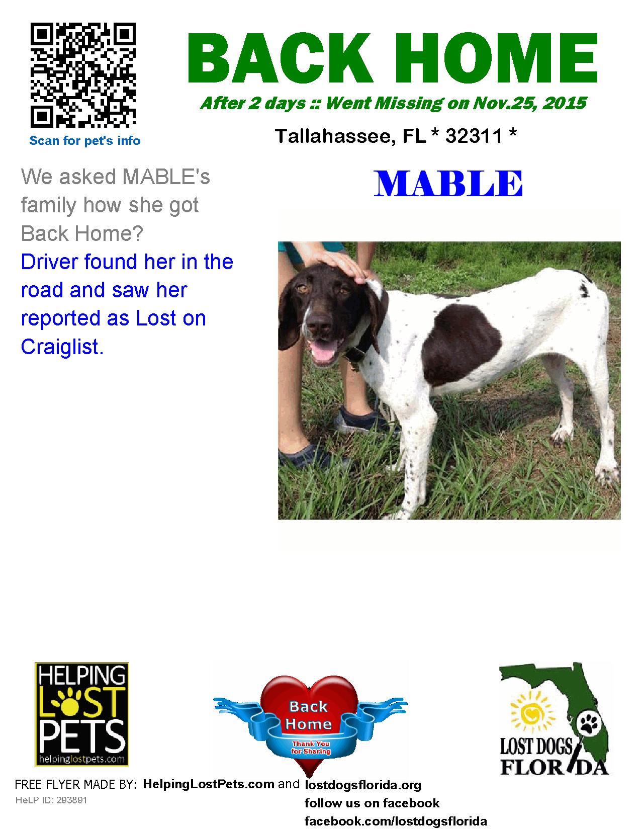 Helping Lost Pets Dog German Shorthaired Pointer Back Home Losing A Dog Losing A Pet German Shorthaired Pointer