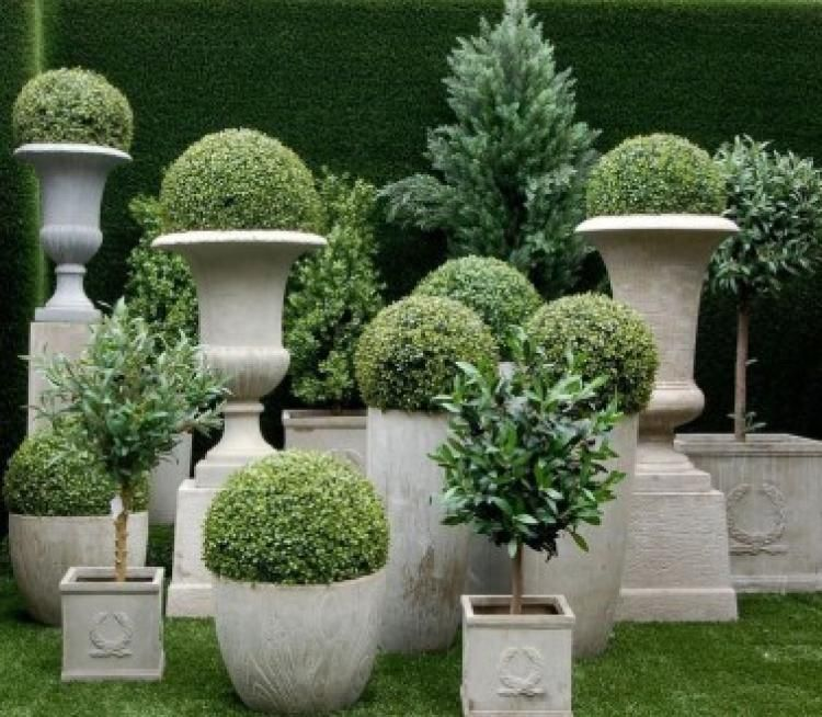 Best Summer Container Garden Decoration Ideas