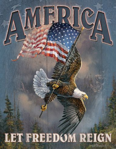 America Let Freedom Reign Tin Sign Allposters Com Patriotic Pictures Bald Eagle Eagle Pictures