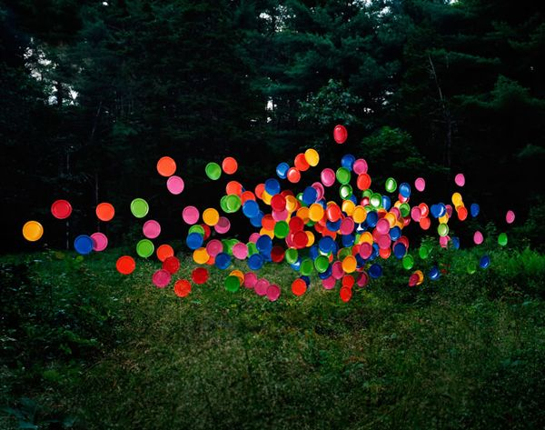 Eerie sculptures hang in the forest, like swarms of discarded objects come to life. Their bright synthetic colors contrast with their dark, mostly natural