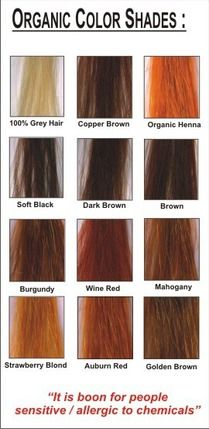 Radico Colour Me Organic Hair Colour Beauty Henna Organic Hair