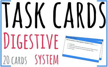 System file digestive pdf
