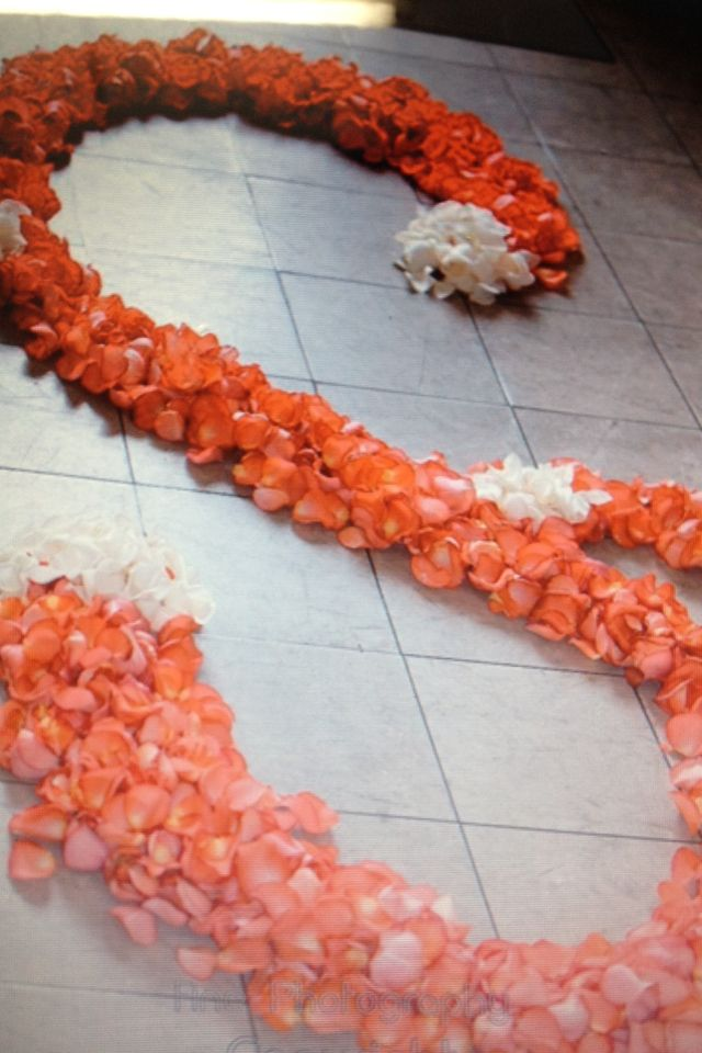 Iguana Coral rose wedding aisle swirl.