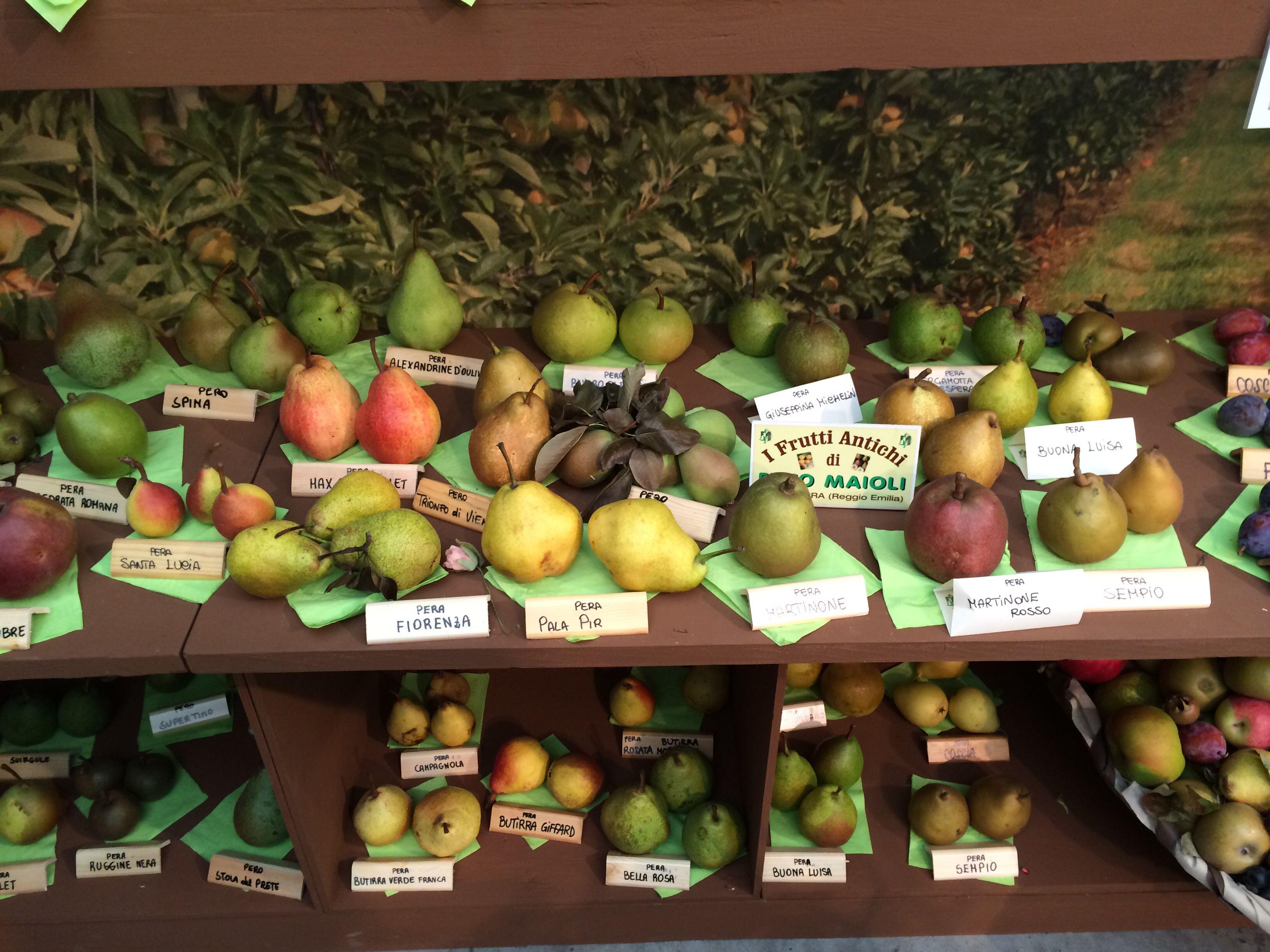 Frutti Antichi Frutta Concime