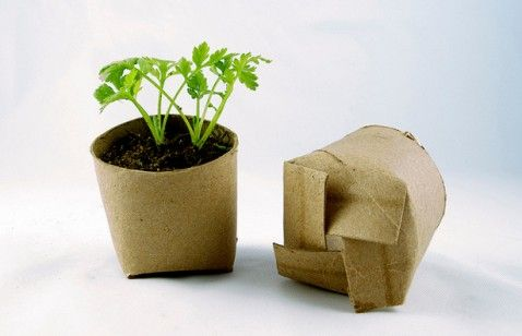Make a biodegradable seed planter with reused toilet paper rolls. You can plant it right into the garden once your seedlings are ready to go outside.