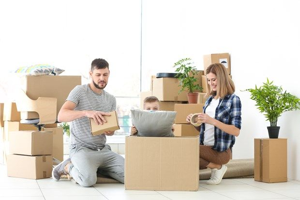 best and reliable furniture movers in melbourne if you are thinking rh pinterest com