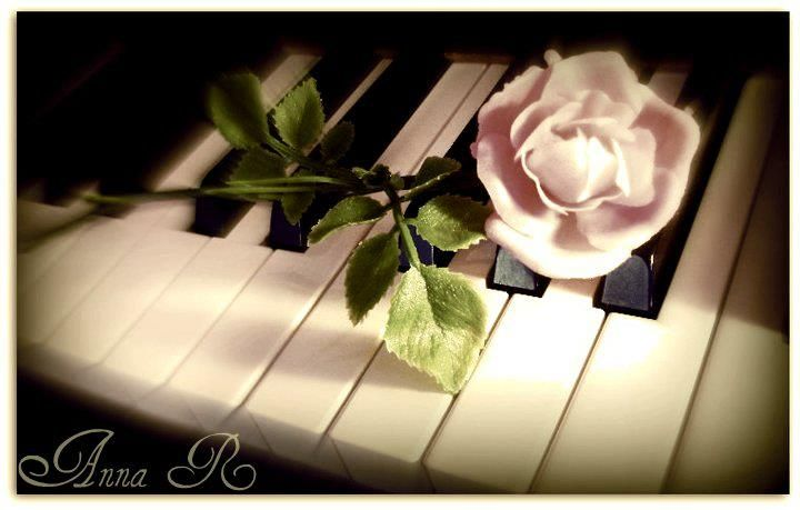Pink Rose On A Piano (Edit) by AnnaMarie1994.deviantart.com on @DeviantArt