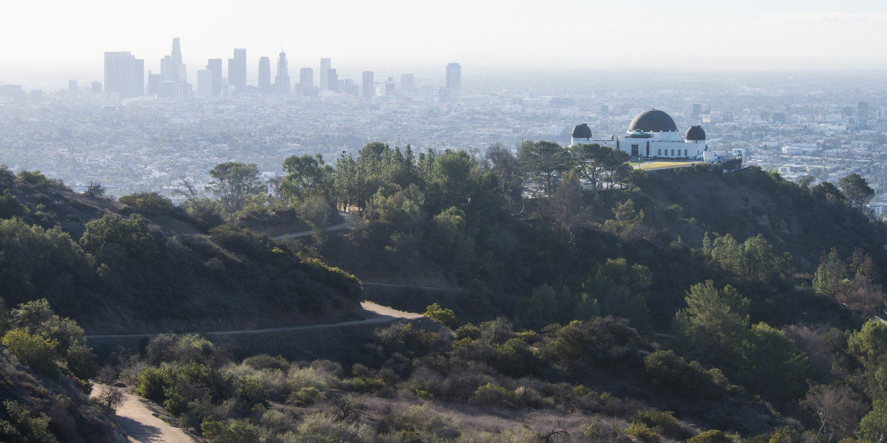 View Of Downtown Los Angeles And The Griffith Observatory From The Charlie Turner Trail Mount Hollywood Hike Via Charlie Turne Hollywood Hike Day Hike Hiking