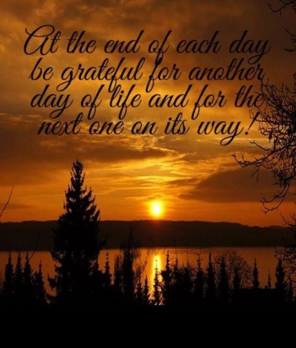 Another Day Of Life Quotes: At The End Of Each Day Be Grateful For Another Day Of Life