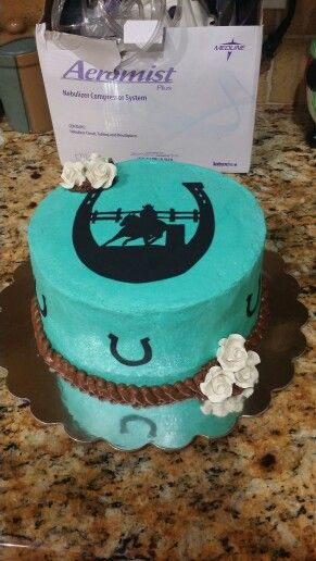 Barrel Racing Cake Horseshoe Cake Birthday Cake