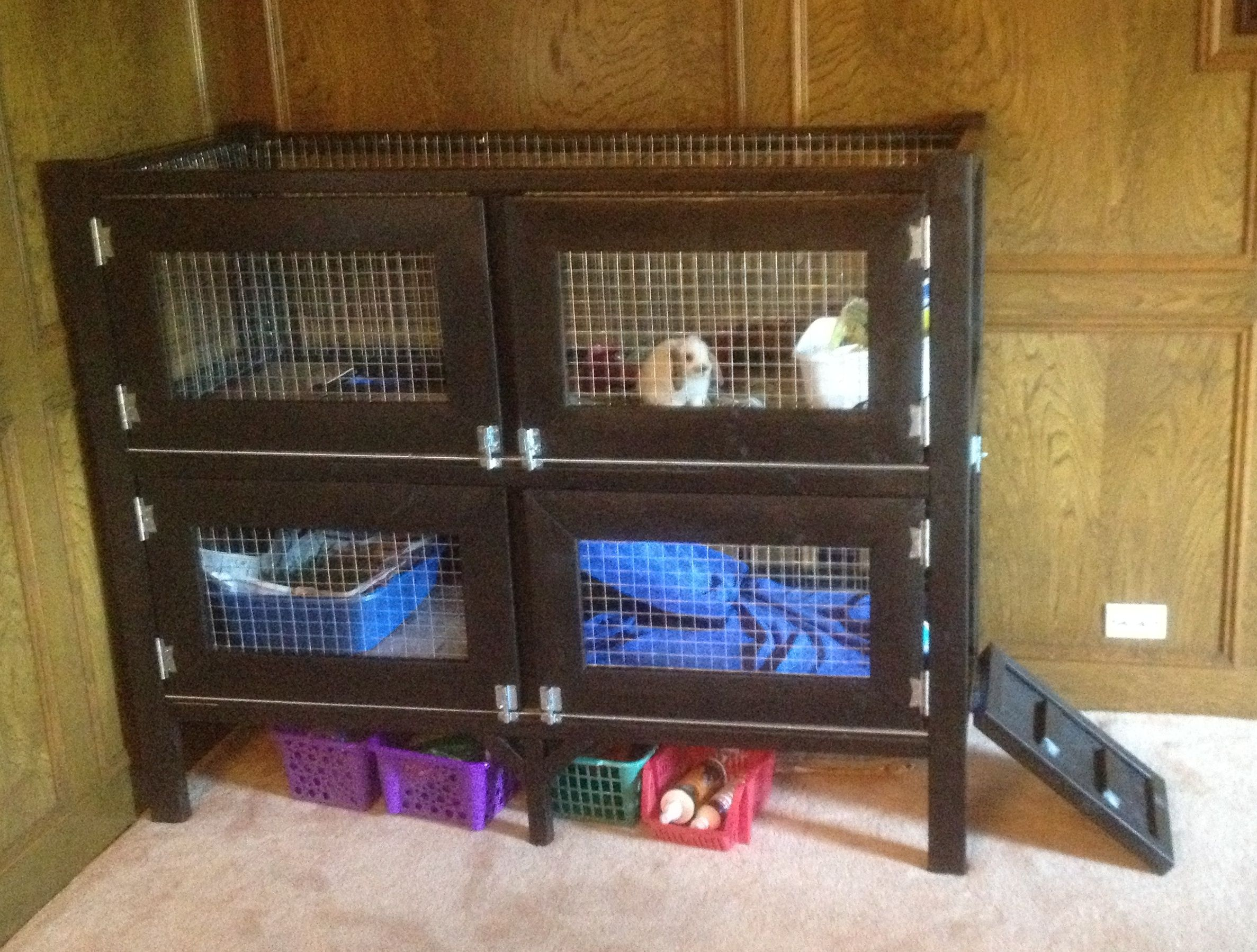 Do it yourself hedgehog cage two story rabbit hutch for Design indoor rabbit cages