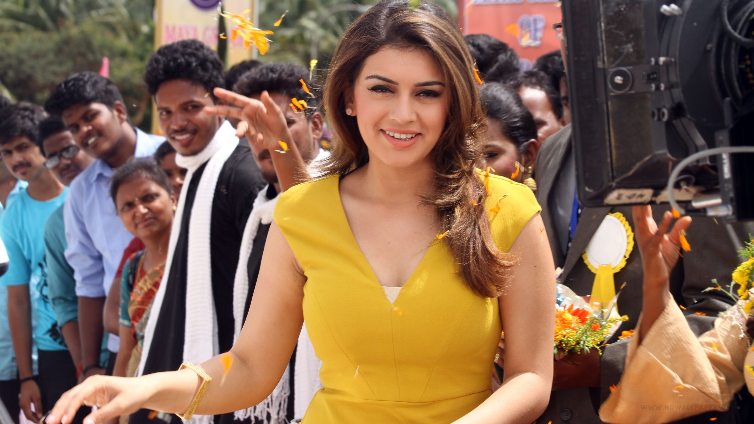 hansika Full HD wallpapers search