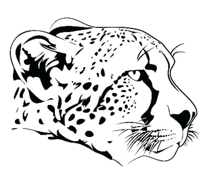 Collection Of Cheetah Coloring Pages Ideas Cheetah Drawing Zoo Animal Coloring Pages Animal Coloring Pages