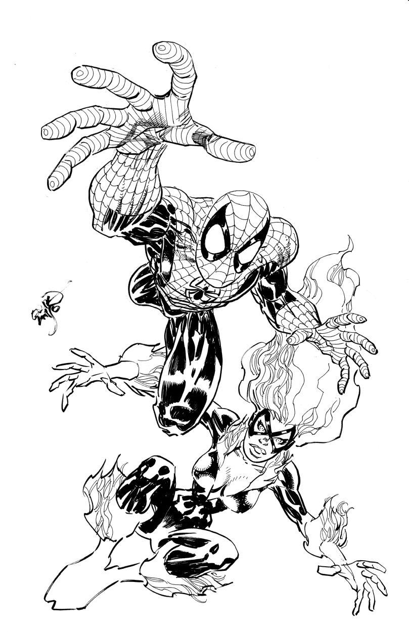 Spider-Man & Black Cat by Erik Larsen