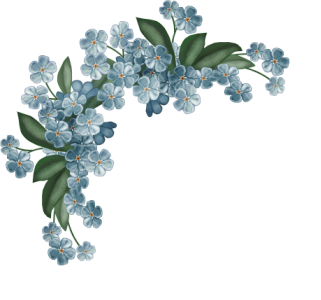 Pin By Pam Moritz On Forget Me Not 1 Flower Drawing Blue Drawings Flower Embroidery Designs