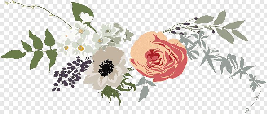 Google Image Result Brown Flowers Free Png Flowers