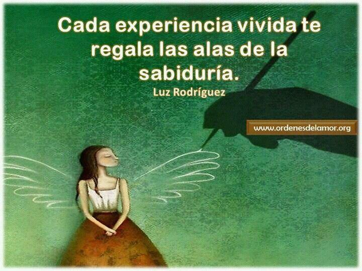 Cada Experiencia Vivida Te Regala Las Alas De La Sabiduria