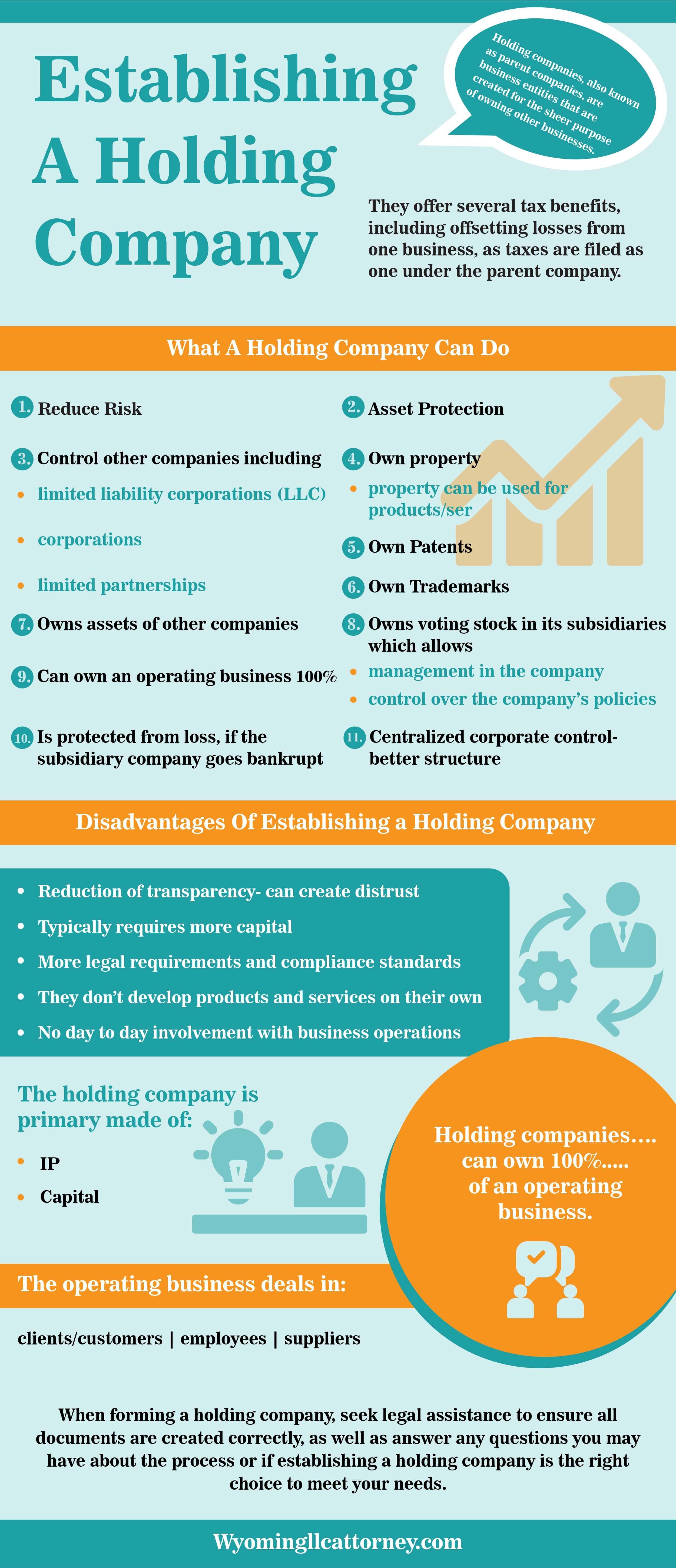 Establishing A Holding Company Holding Company Company Infographic