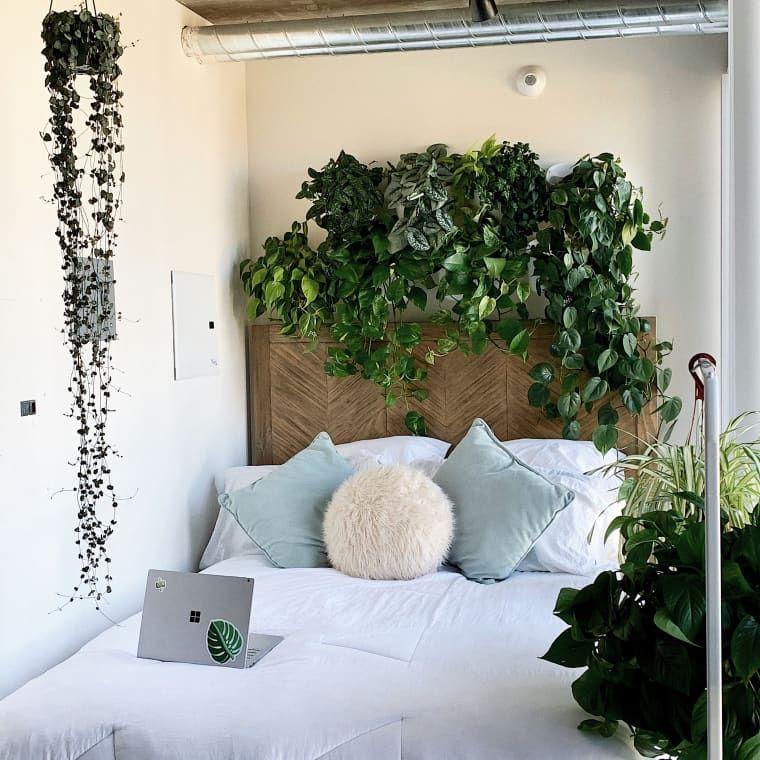 Large Studio Apartments: Thanks To 50+ Plants, This 400-Square-Foot Studio