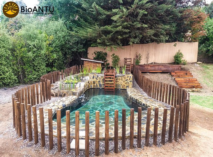 bioantu piscinas naturales y ecologicas chile somos una agrupacin dedicada a la promocion y - Piscinas Ecologicas