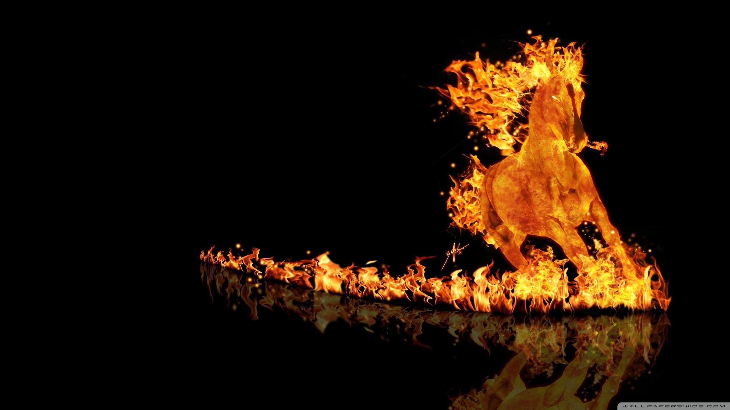 Fantastic Wallpaper High Resolution Fire - b5da23839e0c1e43c001efeda8056cb8  Image_95563.jpg