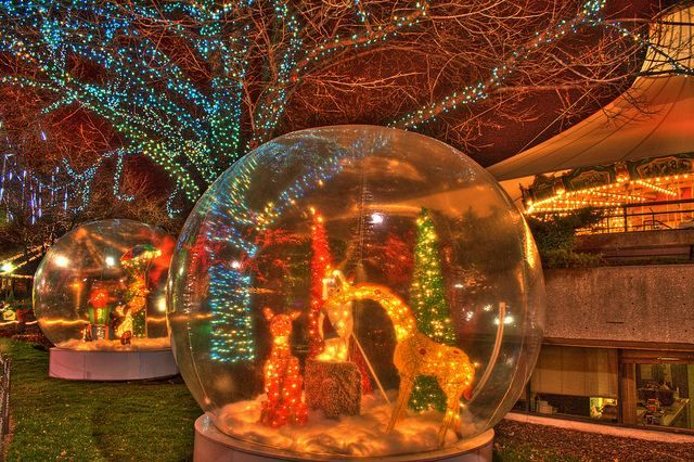 Lincoln Park Zoo Chicago Free And Open To All 365 Days A Year Lincoln Park Zoo Zoo Lights Lincoln Park Zoo Chicago