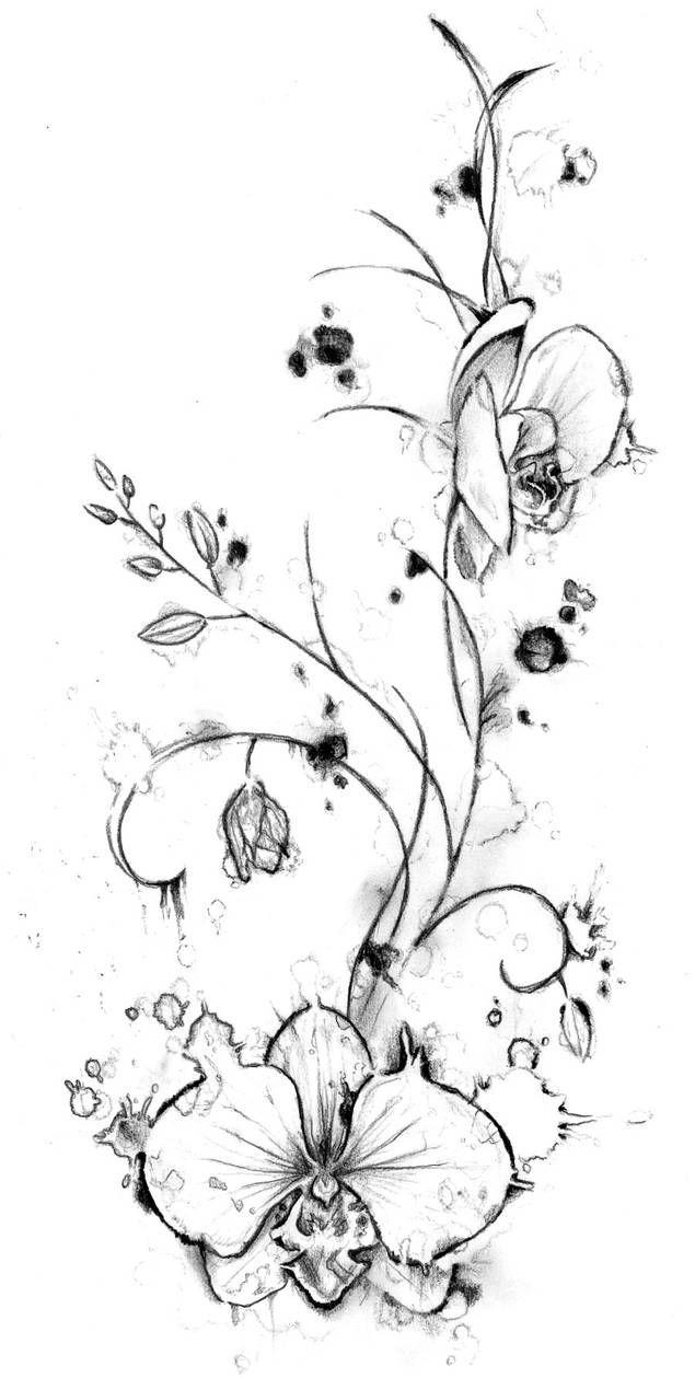 35++ Dessin orchidee pour tatouage trends
