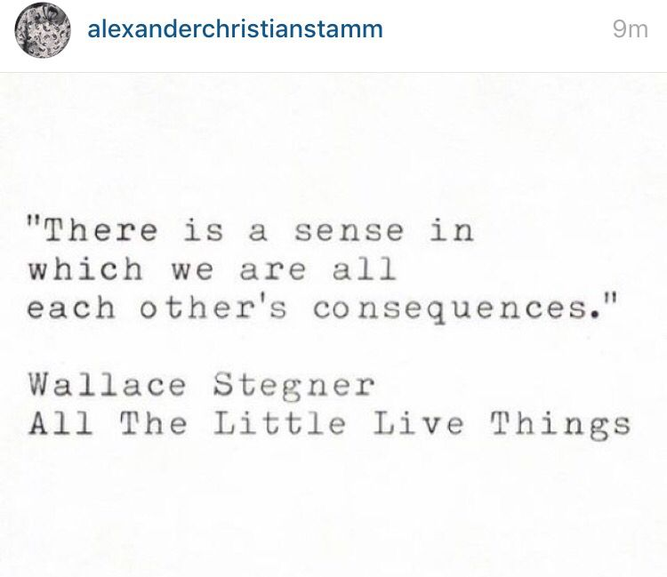 Each Other S Wallace Stegner Quotes Reading