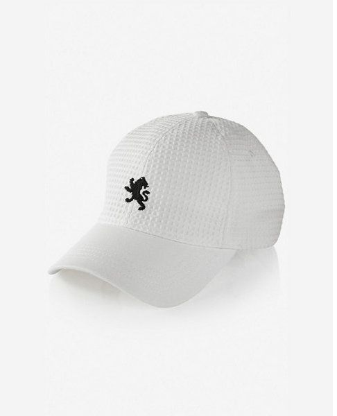 Express waffle texture small lion baseball hat  ad0e0bd4b7c