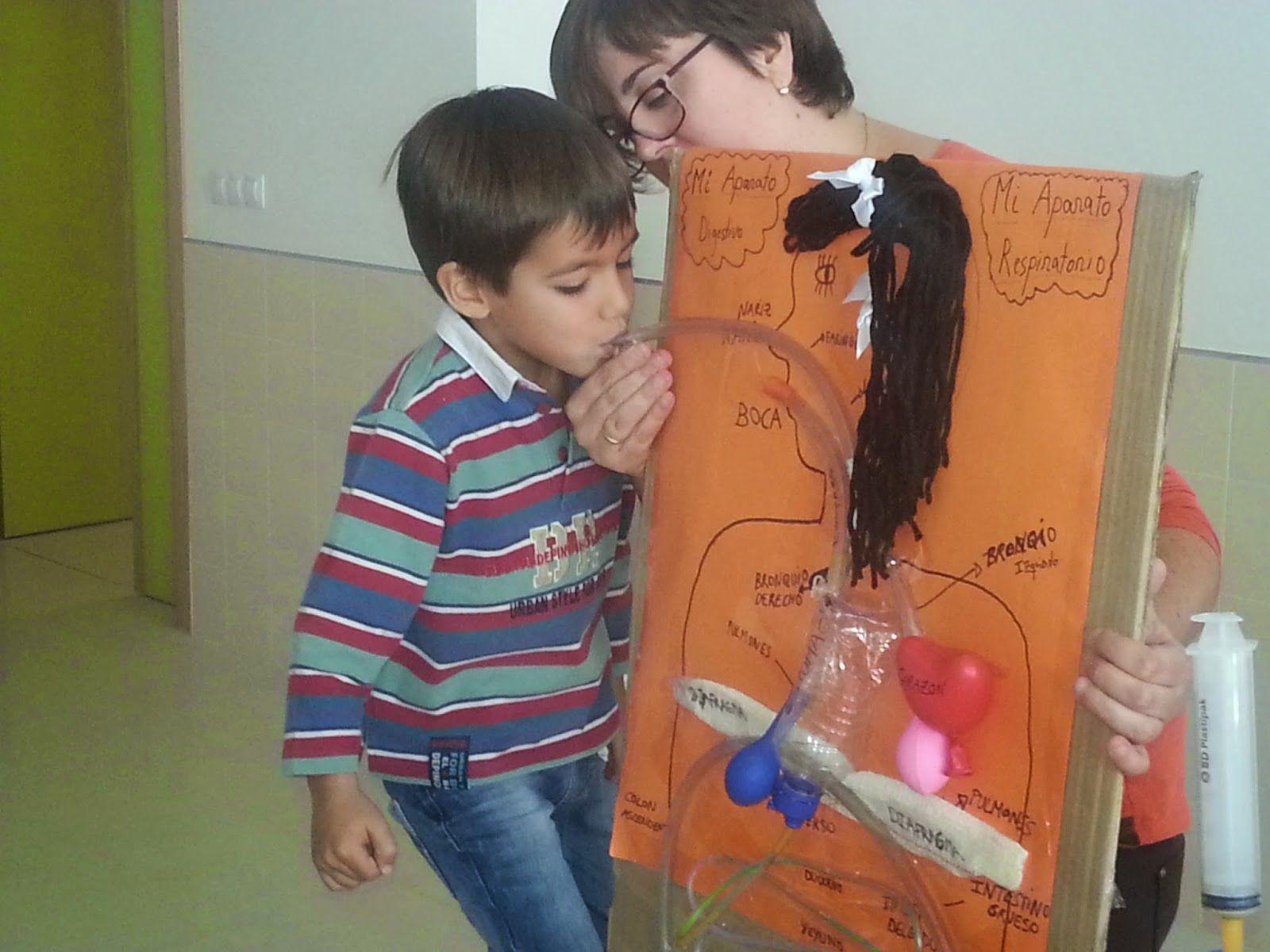 manualidades para infantil de los sistemas del cuerpo - Buscar con ...