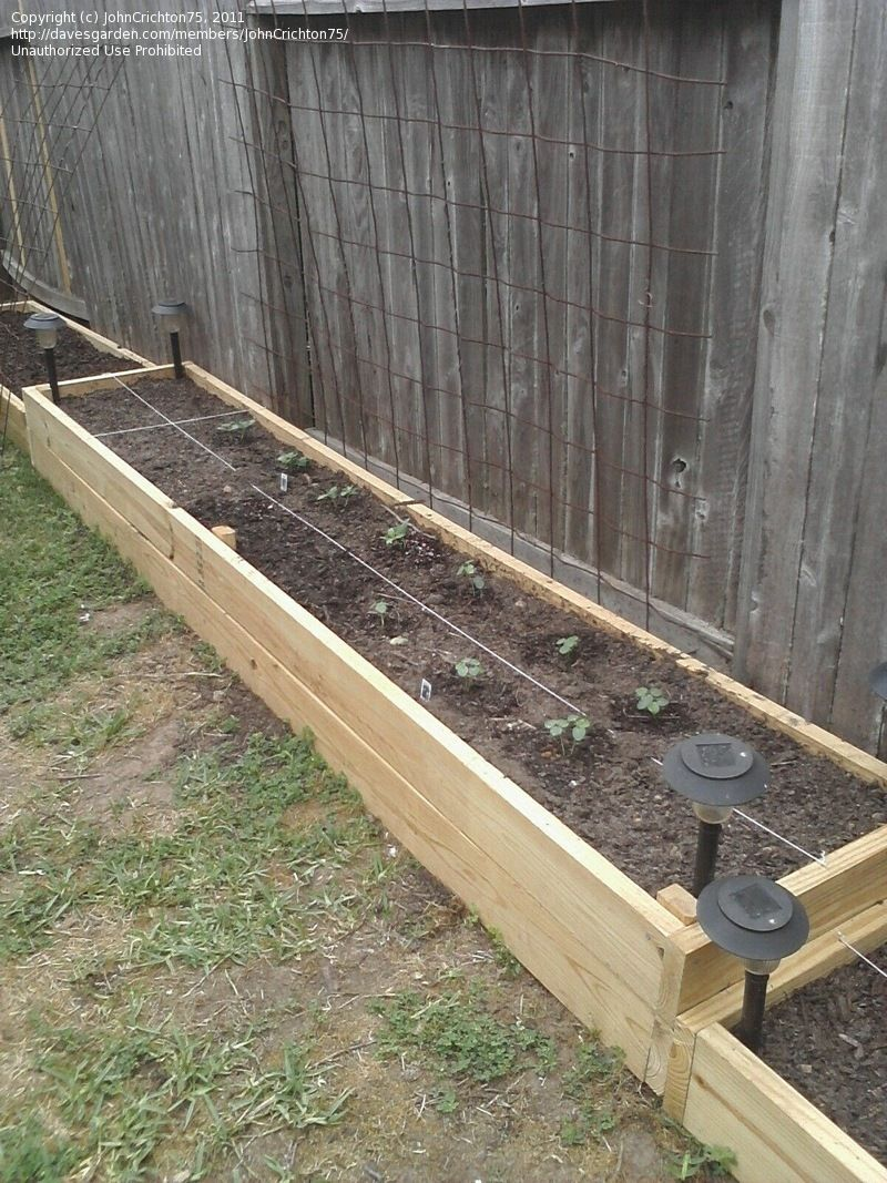 photo of raised bed along fence line want similar but higher beds with ledge for seating