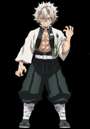 Sanemi Shinazugawa Wind Pillar Kimetsu No Yaiba Wikia Fandom Powered By Wikia Anime Demon Slayer Demon